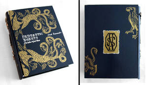 Fantastic Beasts and Where to Find Them book box by RFabiano