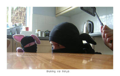 Ninja vs Bunny by bwaa