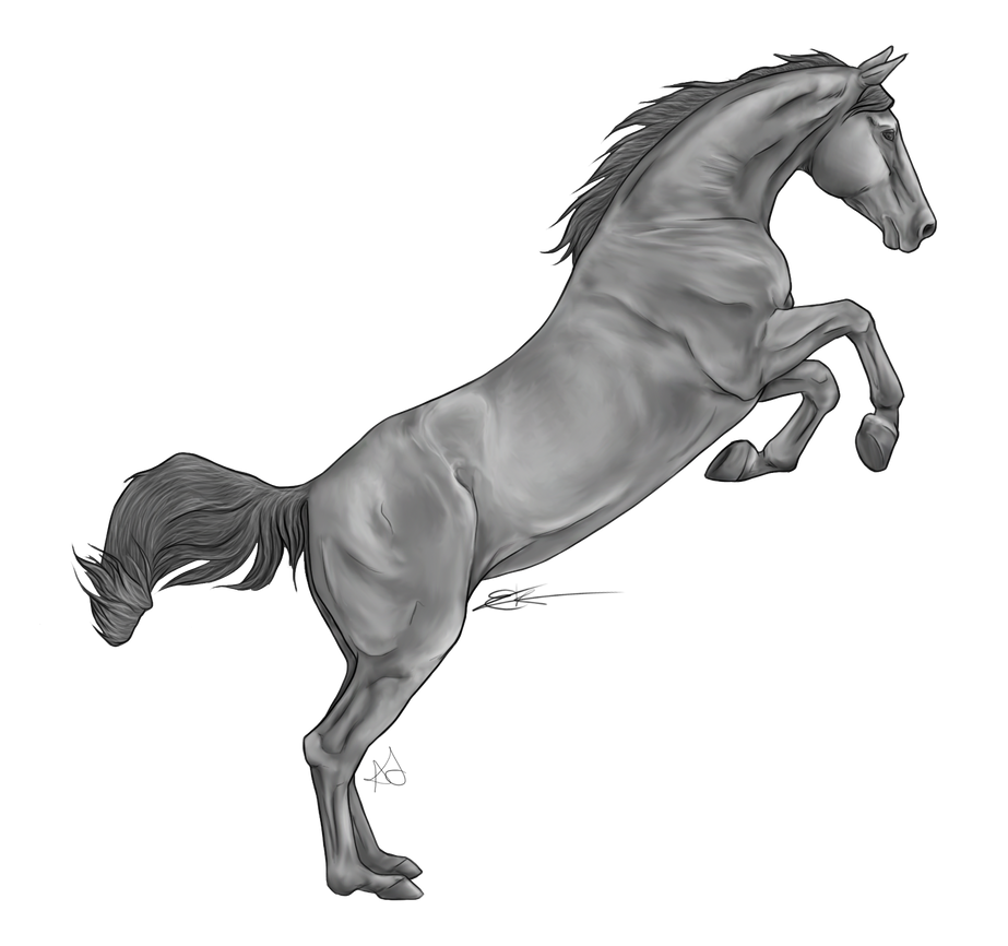 Jumping Horse By Chronically Greyscale by AquaSalt