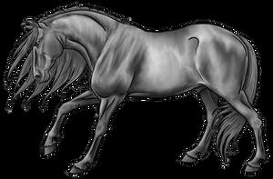 Stallion Lineart by urilium greyscale by AquaSalt