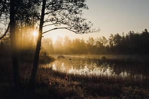 Sunrising Mist IV by Freggoboy