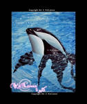 Hourglass dolphin - Old painting 2008 - by Ka-Lionna