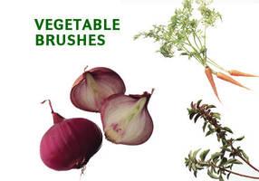 17 Vegetable Picture Brushes by fiftyfivepixels