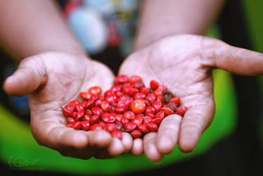 Handful   RED by yearuzzaman