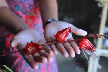 Handful SOUR by yearuzzaman