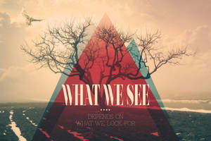 What We See by vik-west
