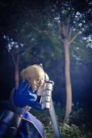 fate zero - two by Phoenixiaoio