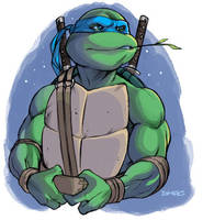 Leonardo by D-MAC
