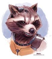 Rocket Raccoon by D-MAC