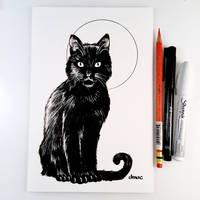 Inktober Day 16 - Black Cat by D-MAC