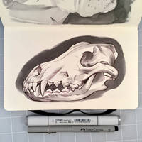 Inktober Day 25 - WOLF SKULL by D-MAC