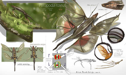 Flutter Newt by Kiabugboy