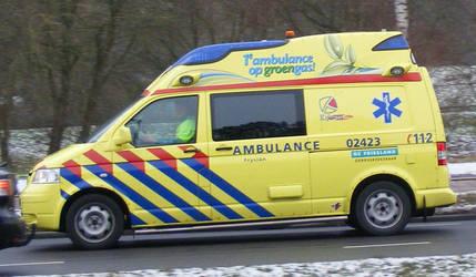 ambulance 02-423 by damenster