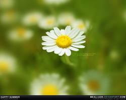 Happy summer by MeAli-ADK