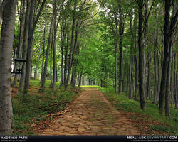 Another path by MeAli-ADK