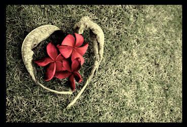 Falling in Love by myownlittlecorner