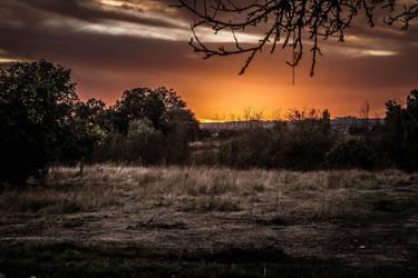 Sundown II by Spikereven