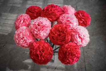 Flowers by Spikereven