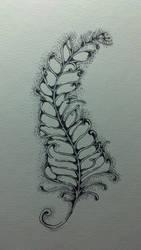 feather by jujubemita