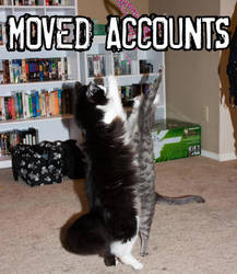 MOVED ACCOUNTS by starchanchan