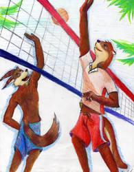 Furry Volleyball by Mangusu