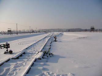 Auschwitz again by Perosha