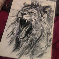 Lion by stardust12345