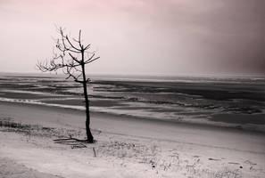 My own beach by Fixzor