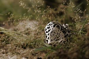 HeartMemory by PhotoCanon