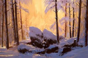 Snow Study by boc0