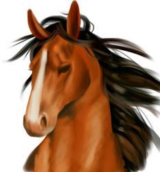 Horse by Gabichan00