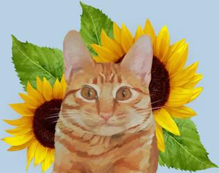 Anakin and the sunflowers by Gabichan00
