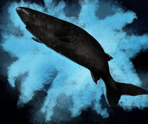 Greenland Shark by killer-rabbit-05