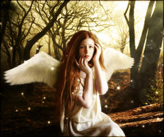 Angel by brandrificus