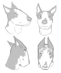 have some digital sketches by Flyrreth