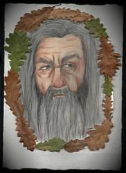 My first Gandalf the Grey. by Mars-Boogerstein