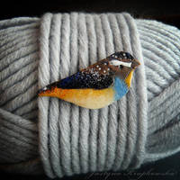 Spotted Pardalote brooch 02 by szaranagayama