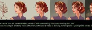female profile tutorial by jiuge