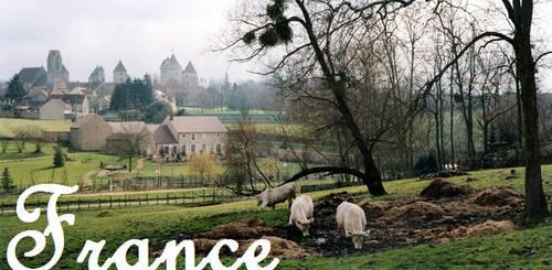 Une certaine idee de la France #1 by sewandrere