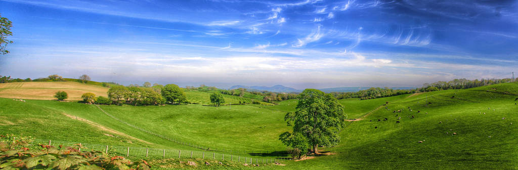 Welsh Hills, Near Welshpool, Powys, Wales by aboshell
