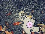 When Seasons Fall In Love by hrtlsangel