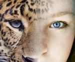 Wild Side - Full by hrtlsangel
