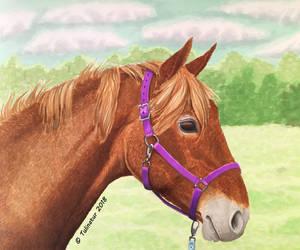 Horse by Tulinatur