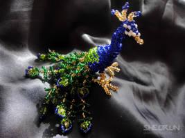 Peacock by sheorun