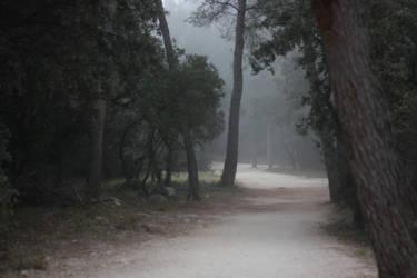 Mist (2) by smaragdistock