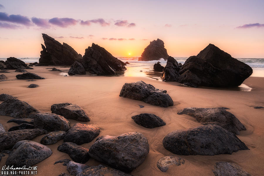 A Sign of Life by NicolasAlexanderOtto