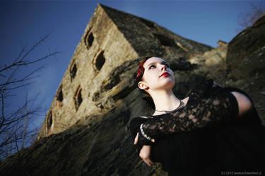 Mrs. Castle by schwertner