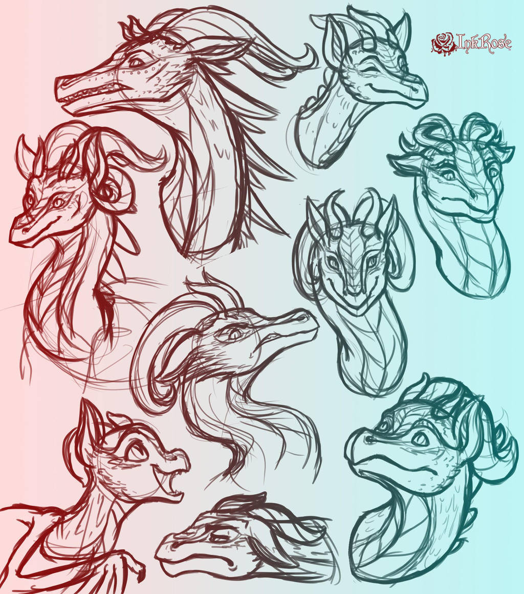 August Dragon Sketch Dump by InkRose98