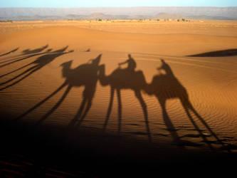 desert dali by serafin666
