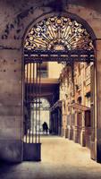 The Gothic Quarter by ralucsernatoni